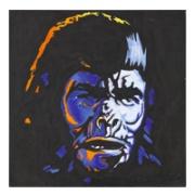 Stash Gorilla